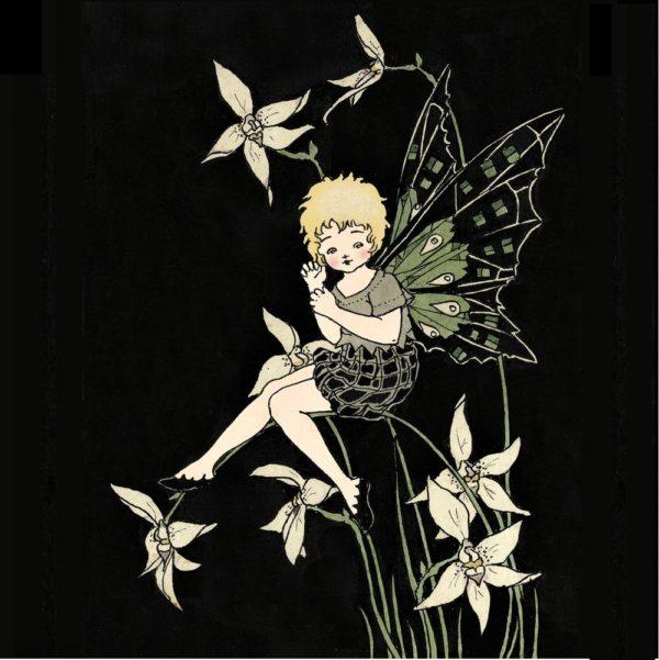 Orchid Fairy Margaret Clark Print