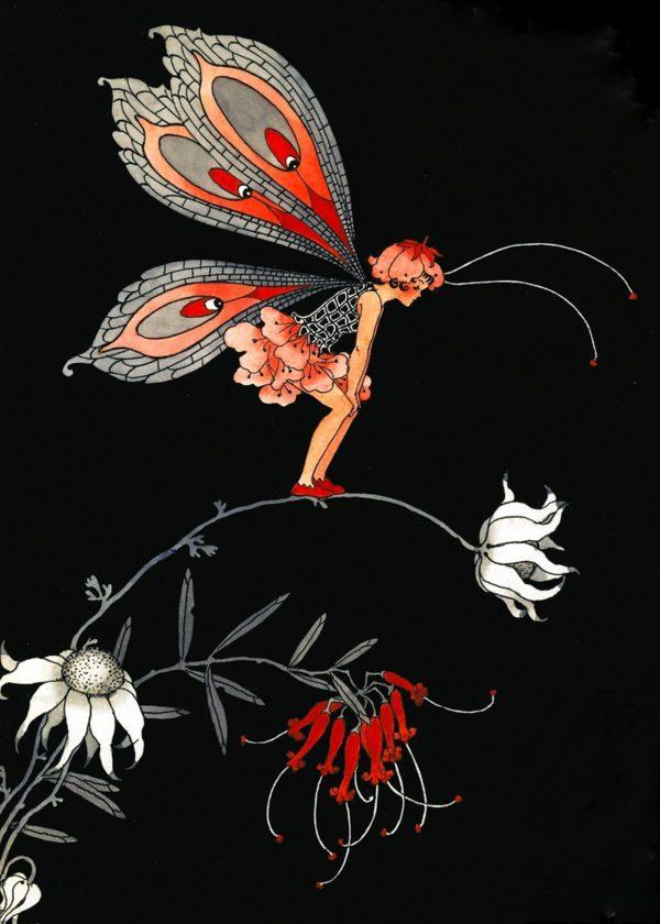 Grevillea Fairy - reproduced from the original Margaret Clark illustration